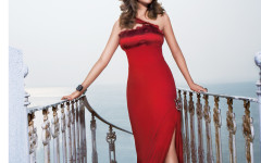 Delna Poonawalla red gown (1)
